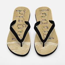 Ingrid Seashells Flip Flops