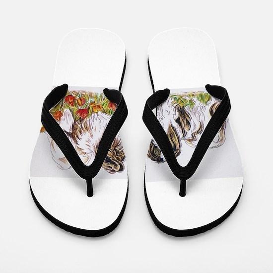 Papillon and Phalene in spring Flip Flops
