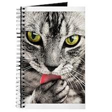 Green Eyed Tabby Journal