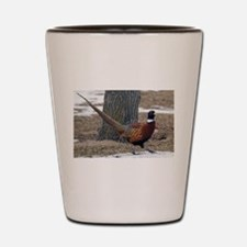 Ringneck Pheasant Shot Glass
