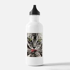 Green Eyed Tabby Water Bottle