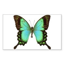 Unique Butterfly Decal