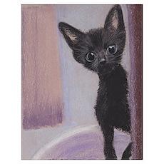 Blue-eyed kitten Poster