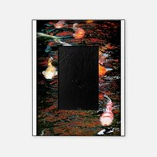Koi in pond Picture Frame