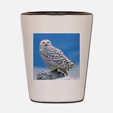 Snowy Owl Shot Glass