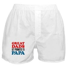 Great Dads Promoted Papa Boxer Shorts