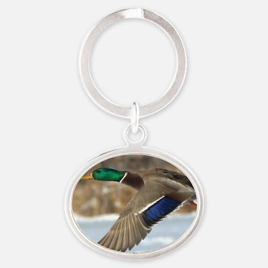 Mallard Duck Oval Keychain