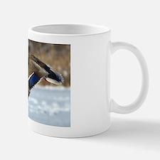 Mallard Duck Mugs