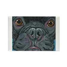 French Bulldog Face Magnets