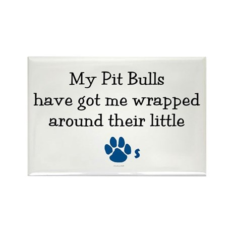 Wrapped Around Their Paws (Pit Bull) Rectangle Mag