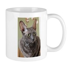 cornish rex blue Mugs