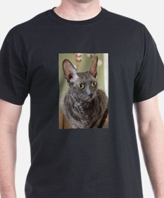 cornish rex blue T-Shirt