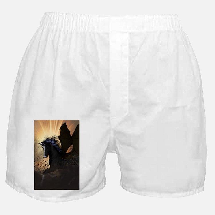 Beautiful dark unicorn Boxer Shorts