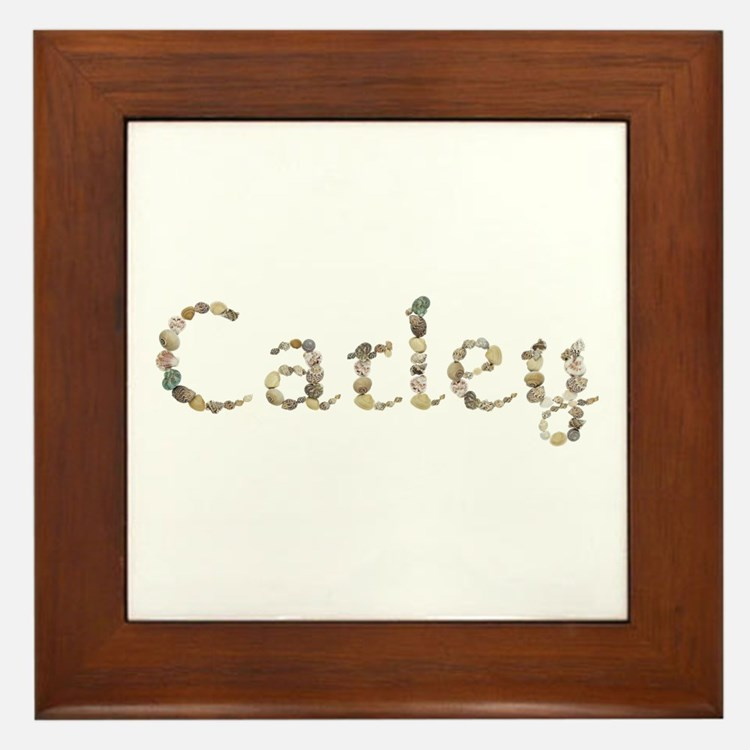 Carley Seashells Framed Tile