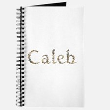 Caleb Seashells Journal