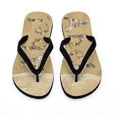 Abel Seashells Flip Flops