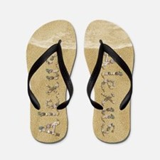 Alexus Seashells Flip Flops