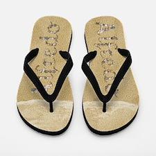Alfredo Seashells Flip Flops