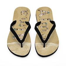 Alma Seashells Flip Flops