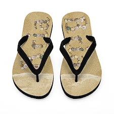 Bria Seashells Flip Flops