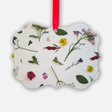 Pressed Flowers  Ornament