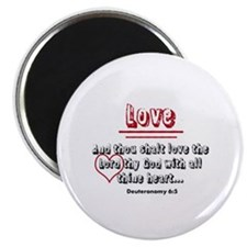 Love-Fruit of the Spirit Magnets
