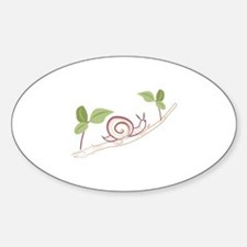 Snail On Limb Decal
