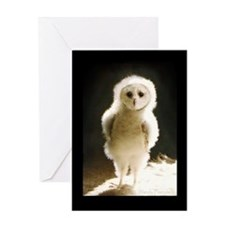 Cute Barn owl Greeting Card