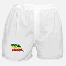Ethiopia Flag (Distressed) Boxer Shorts