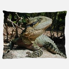 Water Dragon Dog Bed