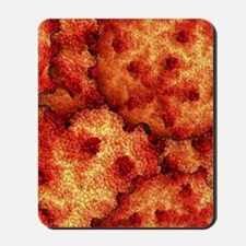Red Coral Reef Mousepad