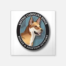 Scd Official Logo Sticker