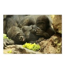 GORILLA'S BABY Postcards (Package of 8)