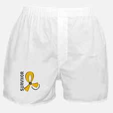 Childhood Cancer Survivor 12 Boxer Shorts