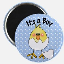 It's a Boy Cute Baby Chick Hatching Magnet