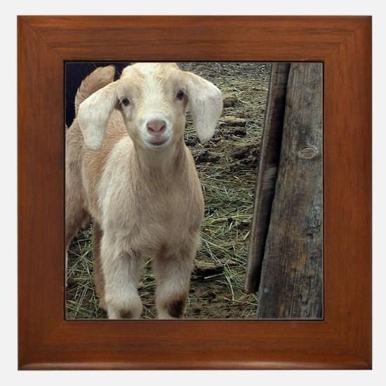 Funny Goat Framed Tile