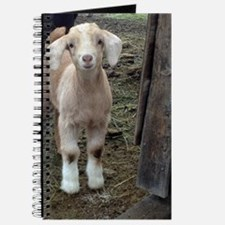 Cool Goat Journal