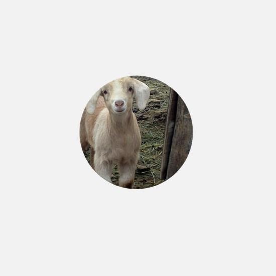 Cute Goat Mini Button