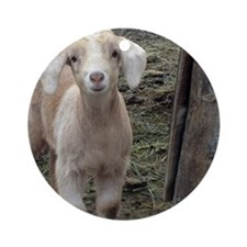 Cute Goat Round Ornament