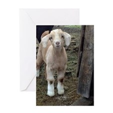 Funny Goat Greeting Card