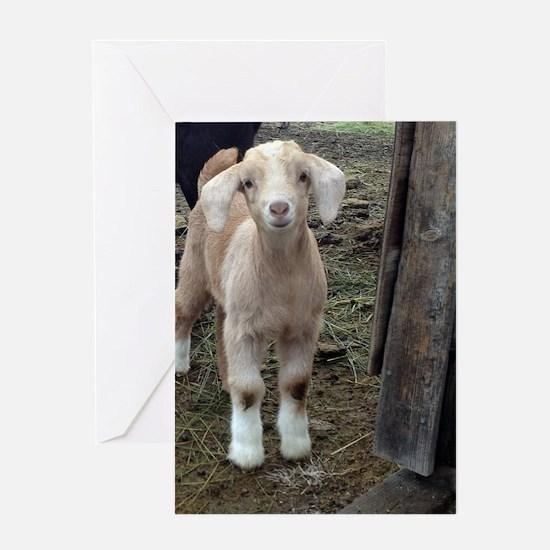Unique Goat Greeting Card