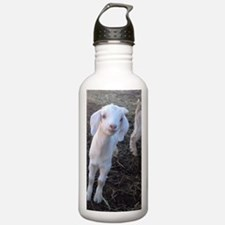 Cute Photos of Water Bottle