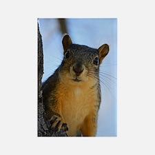 Got Nuts? Rectangle Magnet
