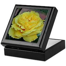 Yellow rose flower in bloom in garden Keepsake Box