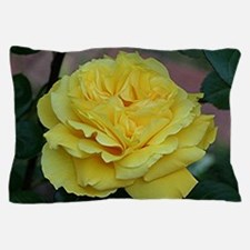 Yellow rose flower in bloom in garden Pillow Case