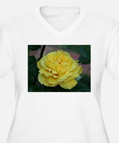 Yellow rose flower in bloom in g Plus Size T-Shirt