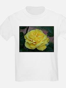 Yellow rose flower in bloom in garden T-Shirt