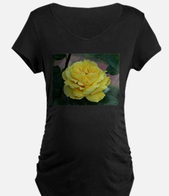 Yellow rose flower in bloom in g Maternity T-Shirt