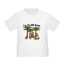 I'm The Big Sister with Little Brother T-Shirt