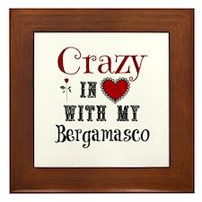 Bergamasco Framed Tile